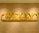 تصویر دوم-welly